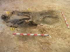 La fosa de Castillejo de Martn Viejo (armh36) Tags: de viejo martn castillejo