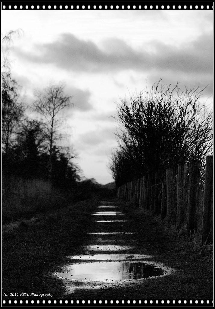 Puddles along the way