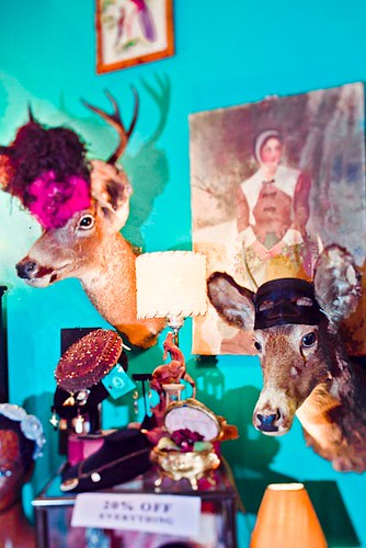animal heads and hats