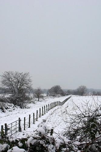 Snow landscape II (variant)