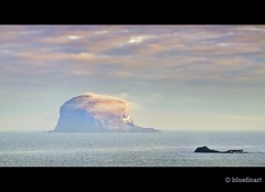 Bass Rock Mist (blue fin art) Tags: mist canon scotland northberwick bassrock eastlothian haar coastuk