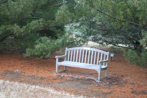 Lenton Hawkinson Memorial Bench