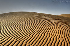 Sand Texture HDR- Explore Front Page (TARIQ-M) Tags: texture landscape sand waves desert ripple dunes ripples riyadh saudiarabia hdr app  canonefs1855       canon400d   allxpressus      tariqm  tariqalmutlaq kingofdesert 100606169424624226321postsnajd12sa