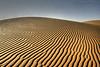 Sand Texture HDR- Explore Front Page (TARIQ-M) Tags: texture landscape sand waves desert ripple dunes ripples riyadh saudiarabia hdr app الصحراء canonefs1855 الرياض صحراء رمال رمل طعس المملكةالعربيةالسعودية canon400d الرمل خطوط allxpressus نفود الرمال كثبان تموجات تموج tariqm نفد tariqalmutlaq kingofdesert 100606169424624226321postsnajd12sa
