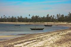 Mozambique-4207