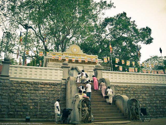 Вход в храм Дерева Будды