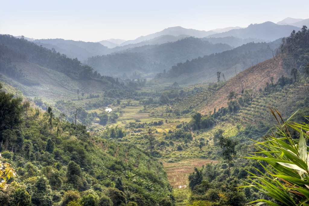 Valley with paddy fields near Luang Nam Tha 2