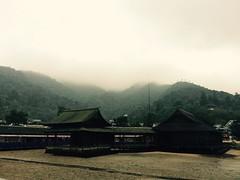 (uucoco) Tags: miyajima itsukushima japan shrine mountain morning