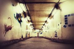 Artistic Passageway (Jon-F, themachine) Tags: snapseed japan  nihon nippon   japn  japo xapn asia  asian fareast orient oriental aichi   chubu chuubu   underground   hallway passageway urban jonfu 2016 olympus omd em5markii em5ii em5mkii em5mk2 em5mark2  mirrorless mirrorlesscamera microfourthirds micro43 m43 mft ft