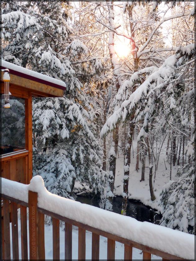 P1120855_first_snow