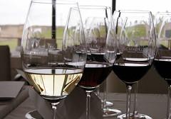 Al gran vino Argentino