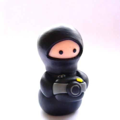 Photographing Ninja