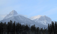 Mount Lawrence Grassi (zeesstof) Tags: park trees snow canada mountains alberta banff canmore conifers banffnationalpark transcanadahighway1 mountlawrencegrassi canoneos7d canon18135is zeesstof