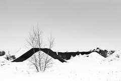 Foto_daniel_churechawa_emotional_landscape-1090927 (Churechawa) Tags: snow art modern composition contrast creativity photography photo artist view contemporary hill fine creative picture poetic mind lovely elegant delicate author graceful epic minimalistic stylish pictorial imaginative mastery lyric harmonious pleasing inventiveness blackwhitephotos panasoniclx3 minimalisticlandscape emocionallandcape landscapesnowlandscape eligiac