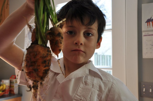 last carrots.