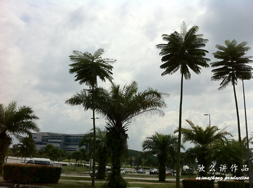 Photo taken using HTC HD7