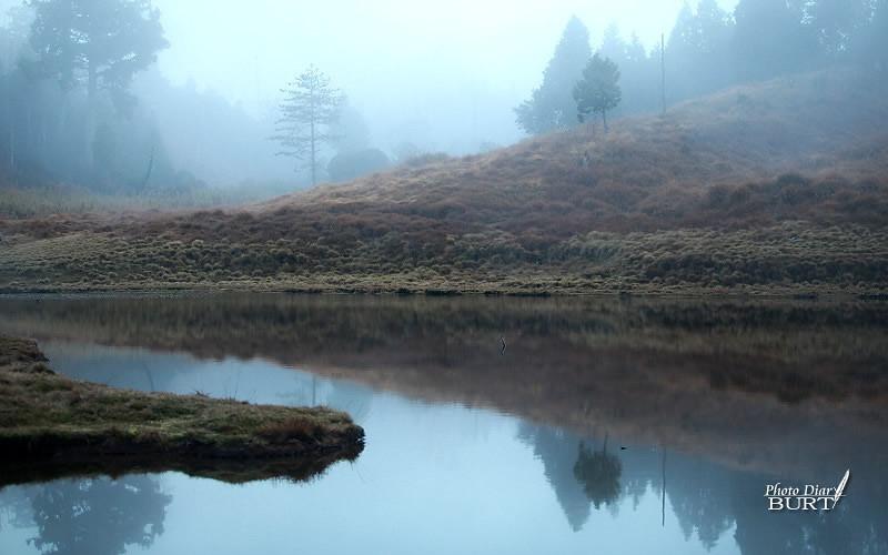 今年的湖畔會很冷