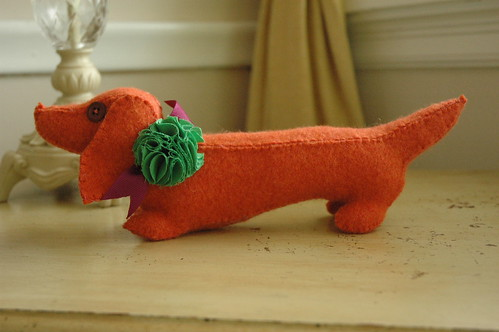 Orange Dachshund