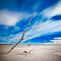 No Herald Angels Here (Jeff Engelhardt) Tags: saltonsea