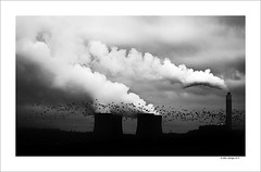 Birds over Rugeley Power Station (Mike. Spriggs) Tags: station birds clouds power steam staffordshire coolingtowers rugeley pyrocumulus coalfired rugeleypowerstation