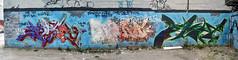 Untitled-3 (collations) Tags: toronto ontario graffiti bacon panoramas tags stitches kane tagging recka graffitiwalls