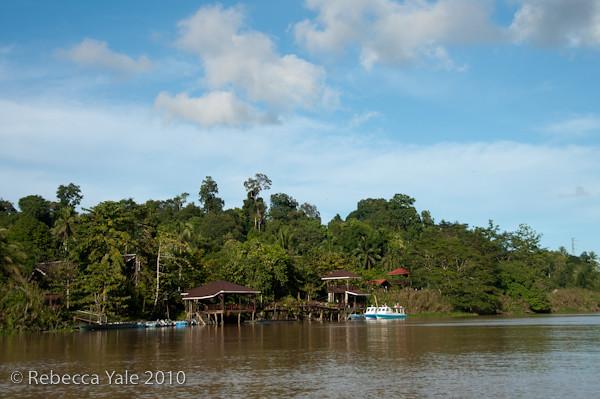 RYALE_Kinabatangan_River_25