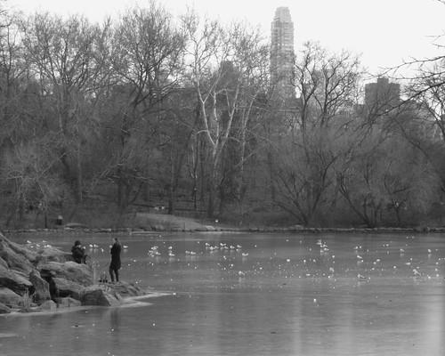 101219_Central_Park_in_December_023