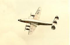 Connie (gdmey) Tags: airplane aircraft lockheed constellation