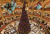 Lafayette Christmas tree (seryani) Tags: christmas paris france canon mall shopping navidad europa europe lafayette shoppingcentre explore presents citycenter francia cityoflights christmasillumination cityoflight 1635mmf28l explored crhistmastree canonef1635mmf28l 1635mmf28lii canoneos5dmarkii 5dmarkii