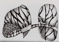 Lama Li Passport Journal #9 Signature page (molossus, who says Life Imitates Doodles) Tags: art journal tangle zentangle zendoodle zentangleinspiredart passportjournal09 lamililokta