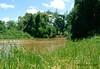 Afgoi, Somalia (aikassim) Tags: river farm agriculture mangotree somalia hornofafrica eastafrica مزرعة نهر irrigationpump afgooye الصومال afgoi shebeelahahoose shabelleriver wabigashabeelle