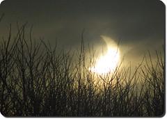 solar eclipse 3 (rafischatz... www.rafischatz-photography.de) Tags: light shadow sky sun moon germany braunschweig solareclipse lowersaxony tamron70300 pentaxk200d