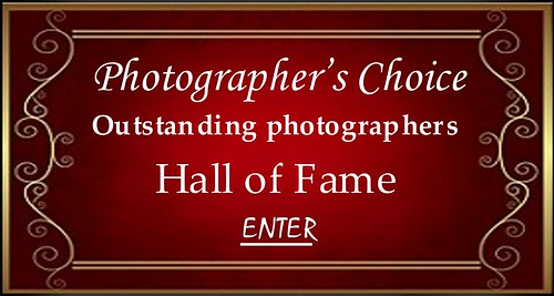 Outstanding Photographers Hall of Fame ENTER