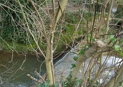Cascatella del Rio Magno