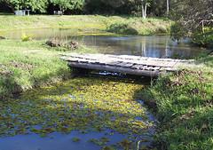 Fazenda Santa Fé - Itapuã (Vagner Eifler) Tags: brasil natureza itapuã riograndedosul viamão