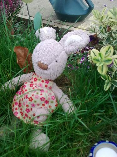 Beatrice Bunny