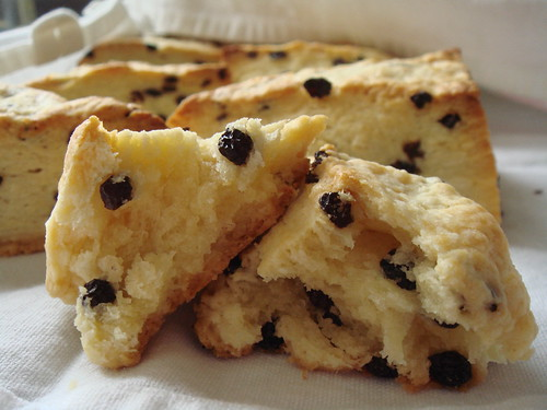 Flaky Currant Scones: Crumb