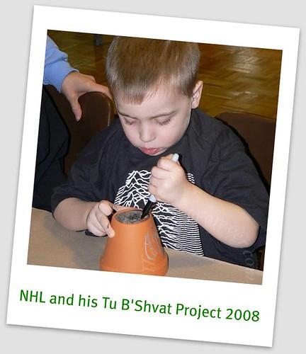 Tu B'Shvat 2008