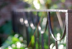 G'morning, & Happy Fence Friday ( Esther ) Tags: fence bokeh sunny fencefriday