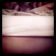 Layered sleep