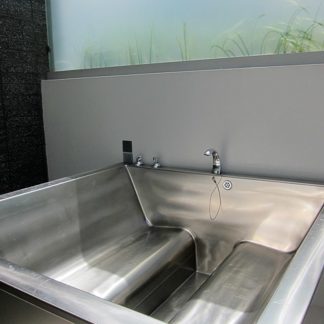 Personal Spa With Stainless Steel Seats