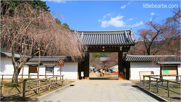 醍醐寺-35