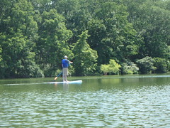"Paddling at Green Lane Park • <a style=""font-size:0.8em;"" href=""http://www.flickr.com/photos/67316464@N08/29241384884/"" target=""_blank"">View on Flickr</a>"