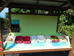 A Roadside Fruit Stand (jimmywayne) Tags: hawaii hawaiicounty fruitstand fruit bigisland