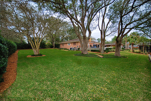 Jacksonville Waterfront Home side yard by Cranewoods.com