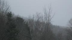 Bristol Vermont (bradb47) Tags: bristol vermont vt 2010 bristolvt bristolvermont 05443