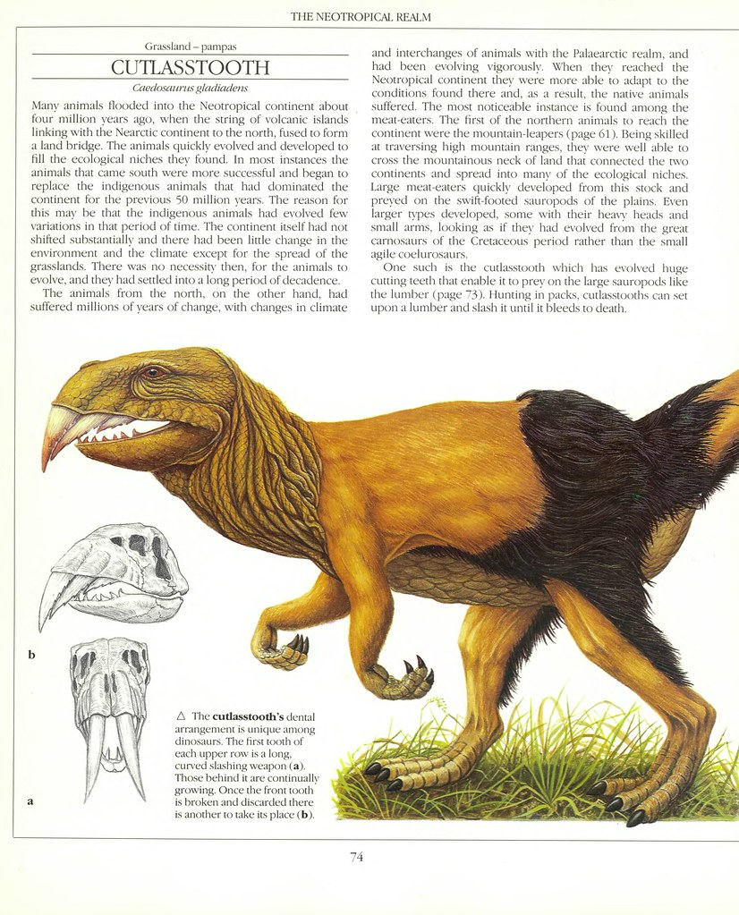 The New Dinosaurs - Dougal Dixon 1988_page_0074