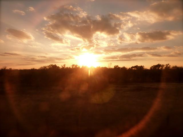 Texas Through the Window