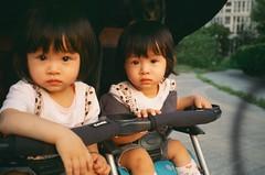 17270019 (PINK) Tags: film twins contaxt3 kodakeb3