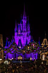 Main Street Lights (~Life by the Drop~) Tags: world christmas street decorations holiday beautiful lights purple magic main kingdom disney walt 2010
